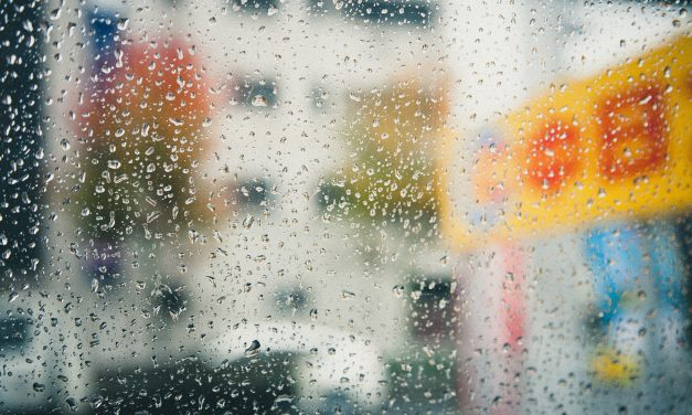 7 Movies to Watch on a Rainy Day